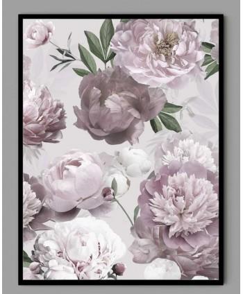 Plakat A3 Piwonie rożowe w ramce