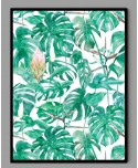 Plakat A3 monstera